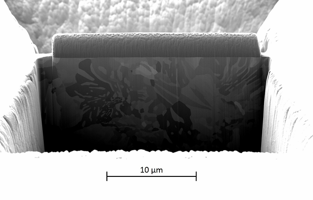 IW_Rasterelektronenmikroskop_Bild2