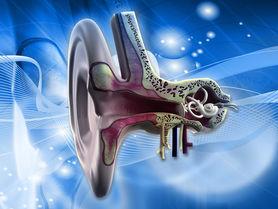 Kleiner Wandler, große Schwingung: Eine innovative Gehörhilfe