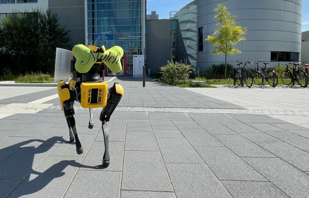 Roboter-Hund Emma